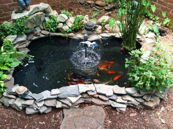 koi pond landscaping 12