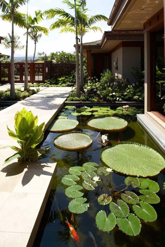 koi pond landscaping 18