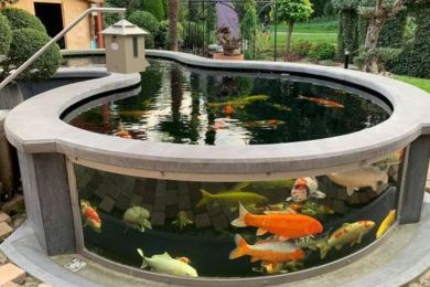 koi pond landscaping feature