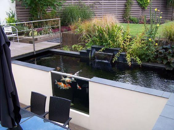 minimalist pond 11