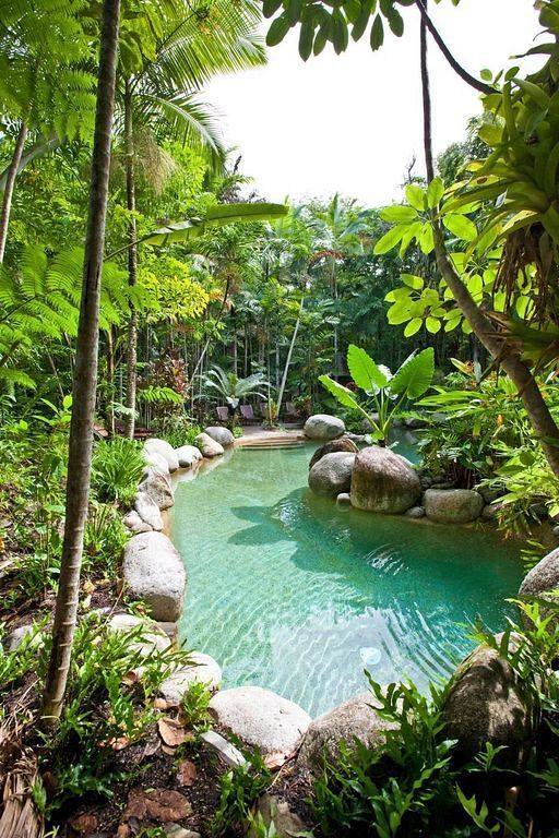 natural swimming pool 10