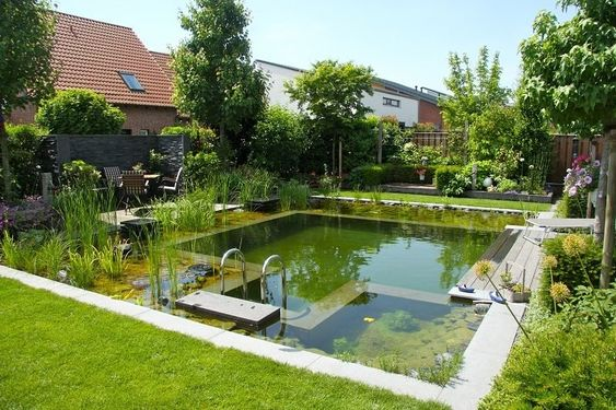 natural swimming pool 11
