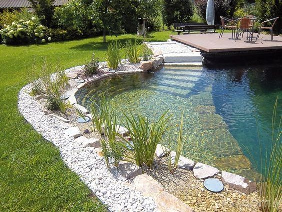 natural swimming pool 3
