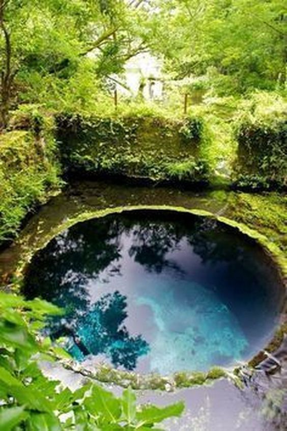 natural swimming pool 9
