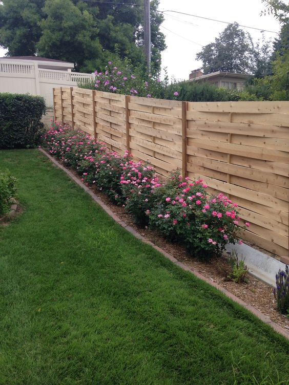 cedar fencing ideas 9