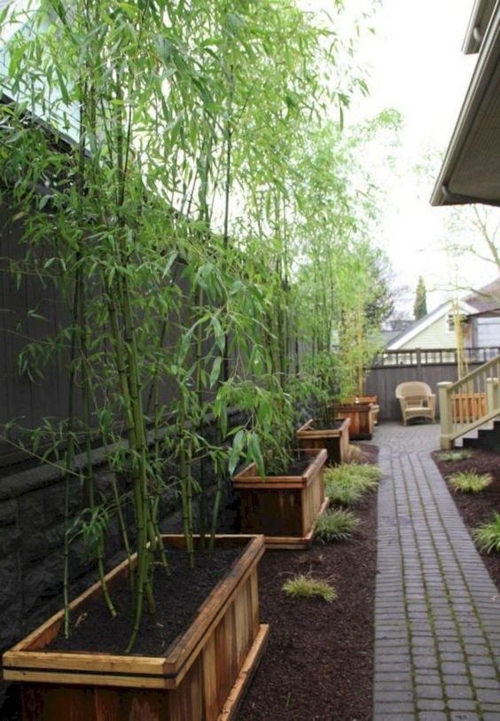 fence landscaping ideas 14