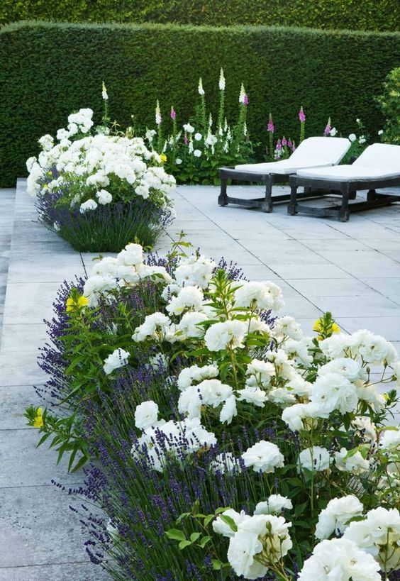flower backyard ideas 21