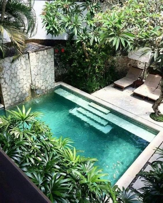 Amazing Swimming Pool: Beautiful Cozy backyard