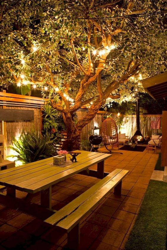 backyard trees ideas 10