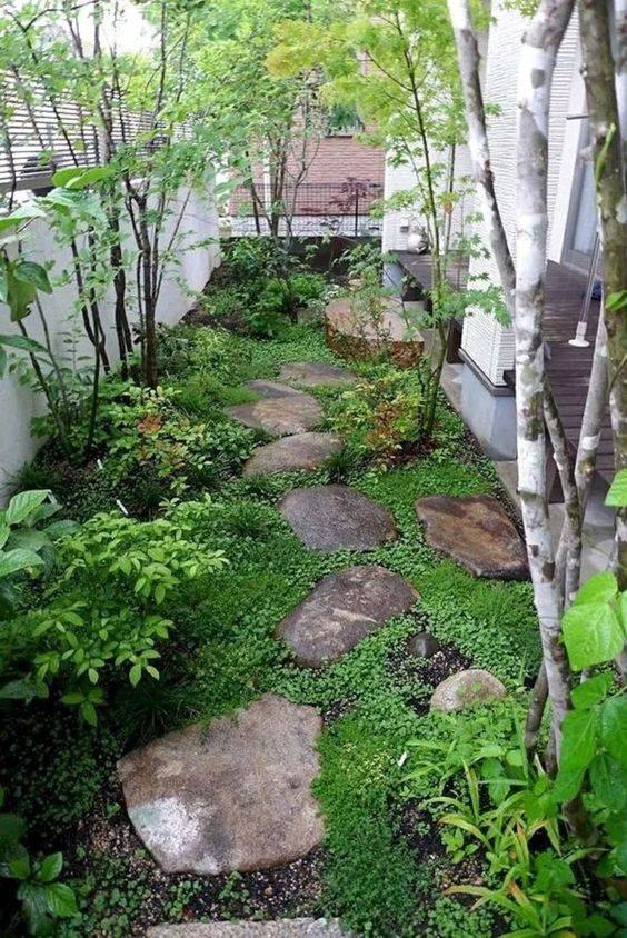 backyard trees ideas 2