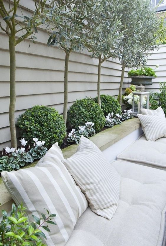 backyard trees ideas 23