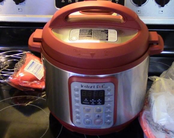 Product Review Instant Pot Viva
