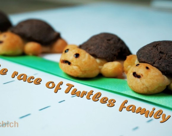 The race of CRAQUELIN Turtles family - Craquelin RECIPE