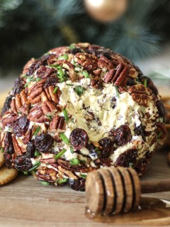 Cranberry and Pecan Cheeseball Recipe