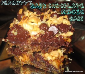Peanutty Dark Chocolate Magic Bars