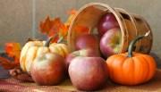 %name   Pumpkin Apple Pie   RecipesNow.com