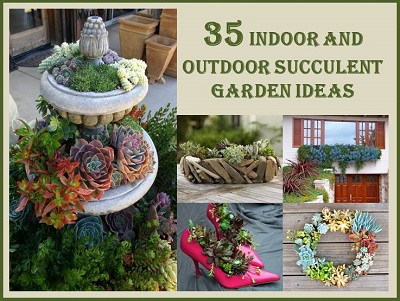 Recipes Projects & More Garden