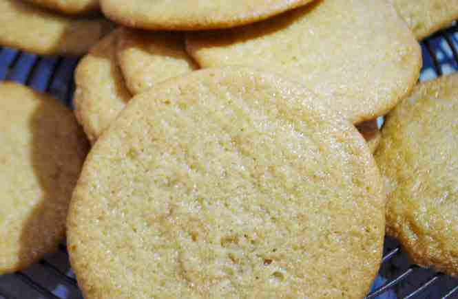 honey ginger snap cookies