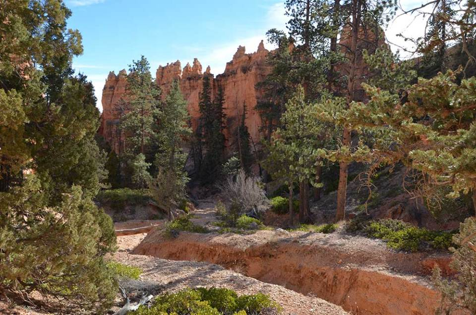 Paysage de randonnée dans le Bryce Canyon, USA