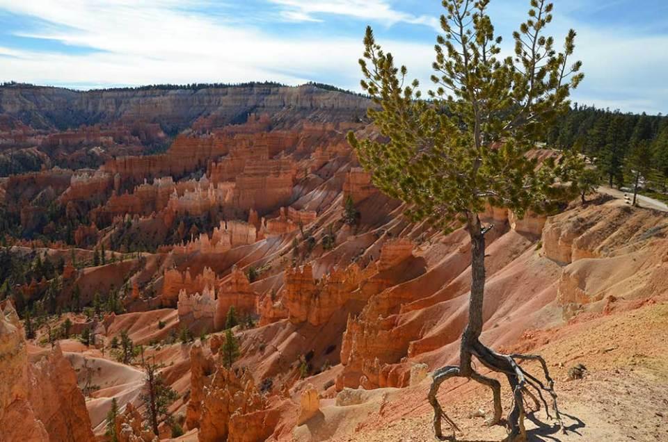 Vue sur Bryce Canyon depuis Sunset Point, USA