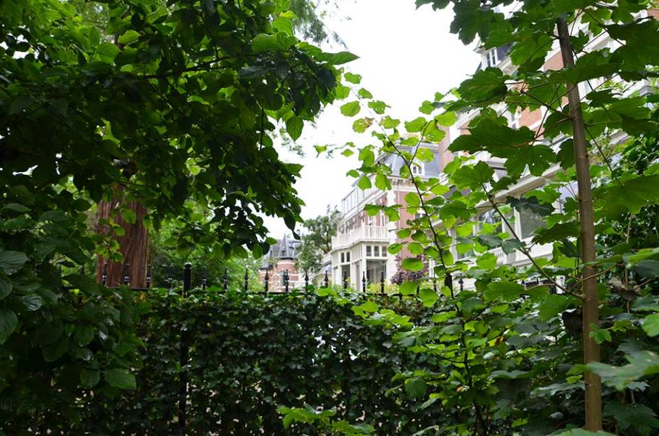 Vue sur une rue de jolies maisons depuis le Vondelpark, Amsterdam