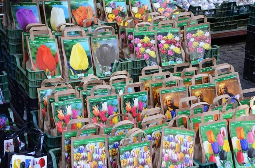 Un étale du marché aux fleurs d'Amsterdam