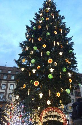 Grand sapin de Strasbourg, Place Kléber 2017, Alsace