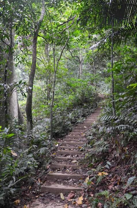 Parc Cuc Phong, Vietnam