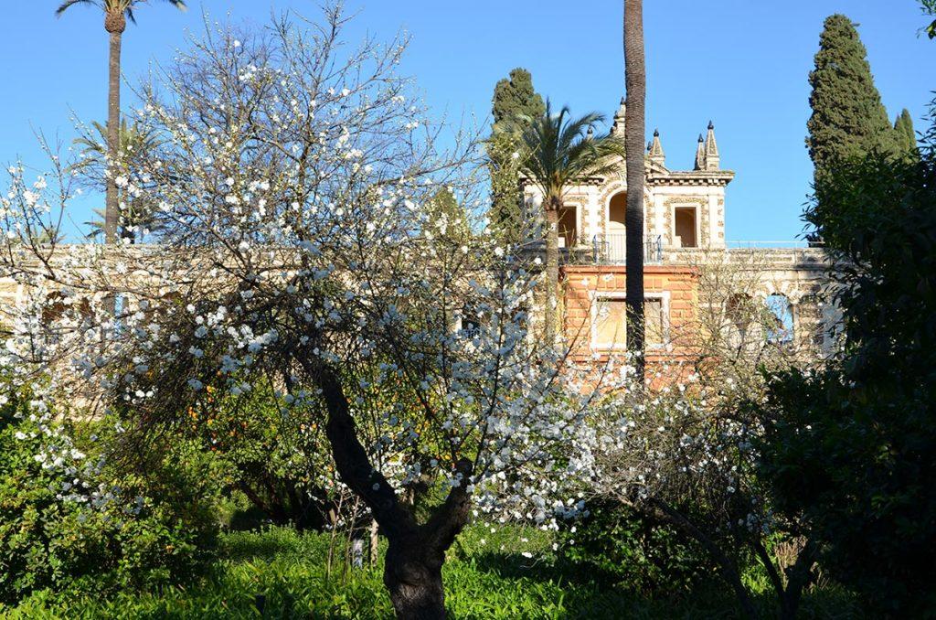 Alcazar, Séville, Andalousie, Espagne