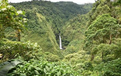 Cascade luxuriante à Arenal au Costa Rica