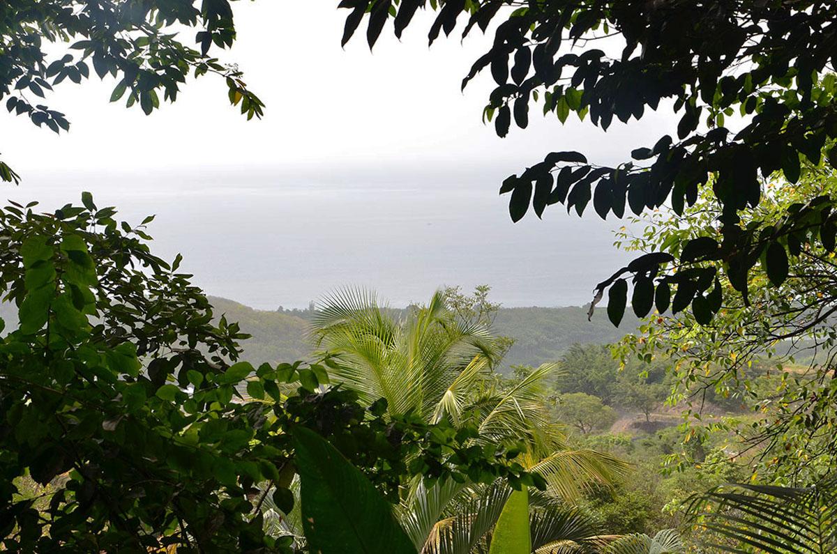 Vue sur la mer depuis notre cabane Tendacayou Ecolodge, Guadeloupe