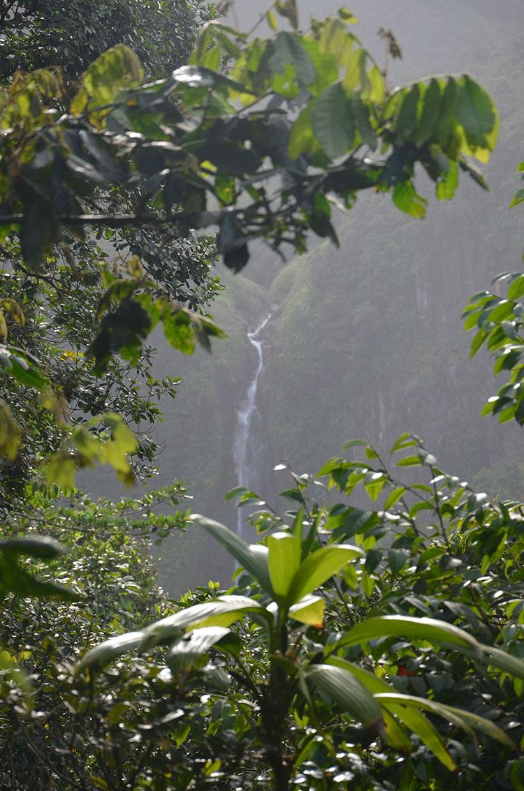 Vue sur une des chutes du Carbet, Guadeloupe