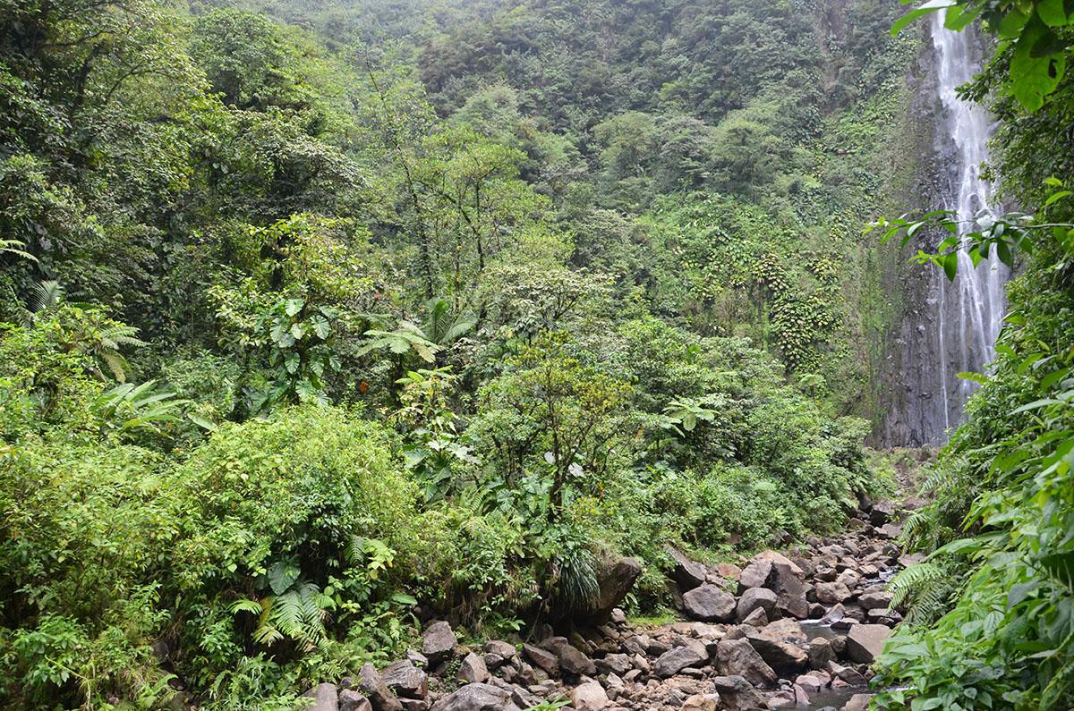 Au pied d'une des chutes du Carbet, Guadeloupe
