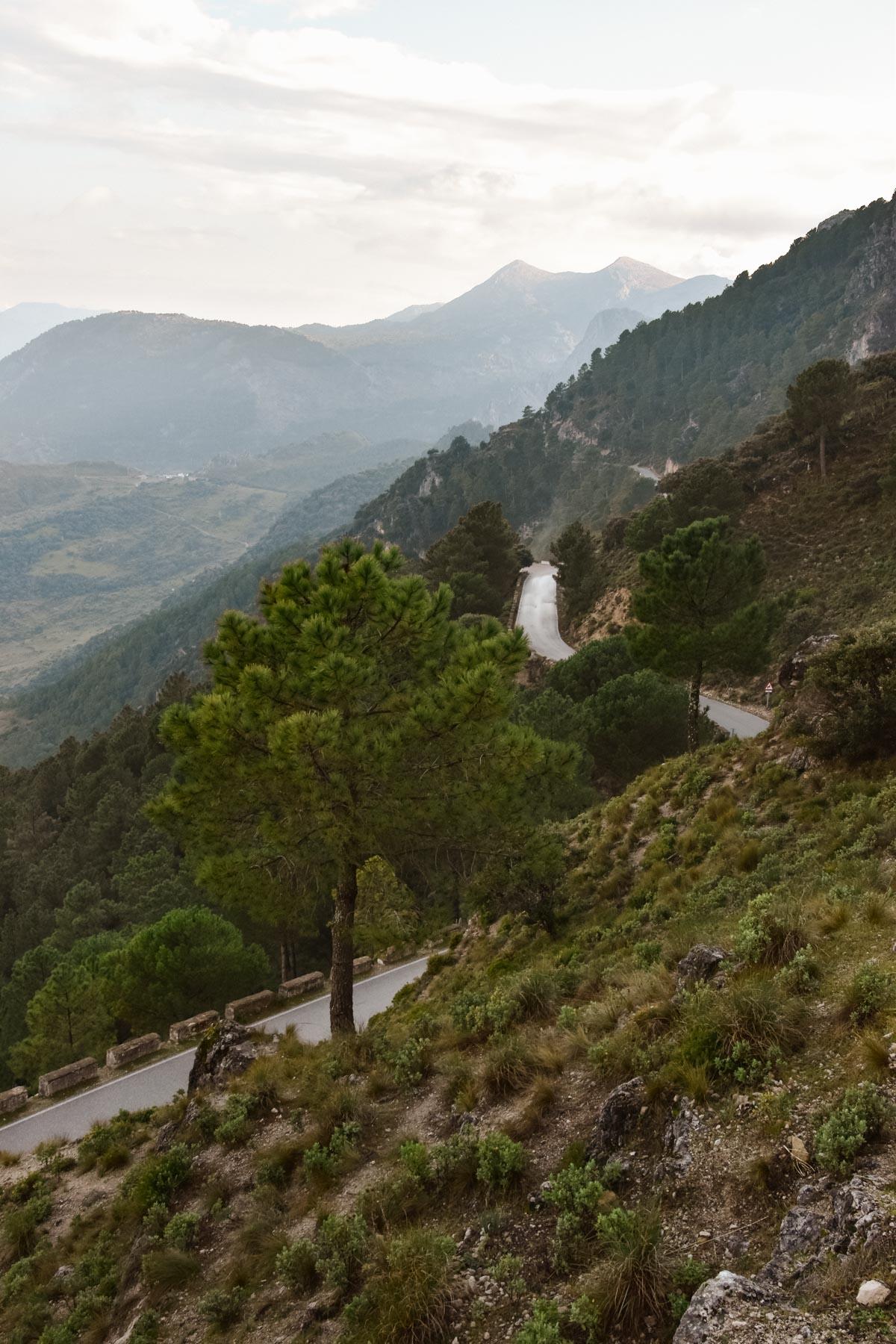 Route sinueuse de la Sierra de Grazalema, Andalousie