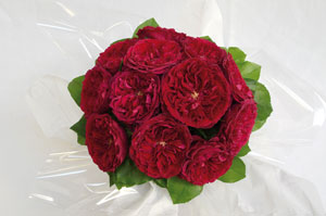 Tess-Classic-Rose-Bouquet---12-Stem