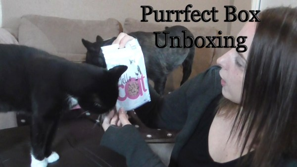 Purrfect Box review 2014 August
