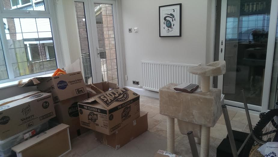 i-have-a-new-den-moving-house-tips