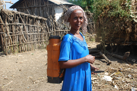 Woman in Metema community, Ethiopia, using knapsack sprayer