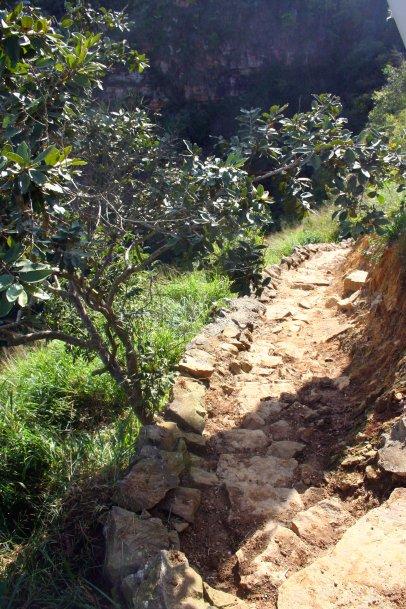 Dieser ausgetretene Weg führt hinab in den cañón ...