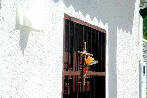 Ein Kreuz mit Rose an einem Fenstergitter ...
