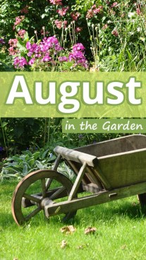 August in the Garden