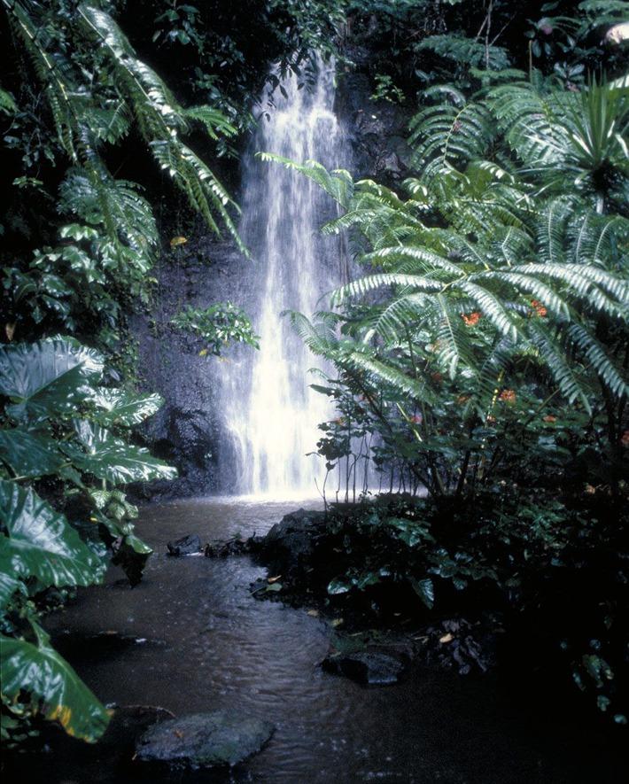 The Faarumai Waterfalls
