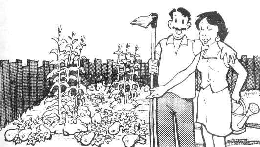 2. La Chacra – Manual Pro-Huerta del INTA