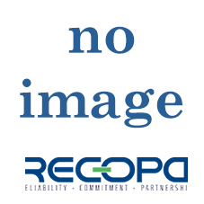 Recopa Ref: RCG3002013 --  SYNCHRONIZING ASSY.