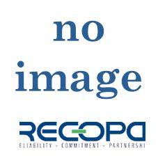 Recopa Ref: RCG3002028 --  SYNCHRONIZER BODY