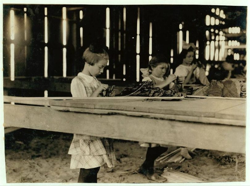 lewis hine cigar makers child labor USA 1