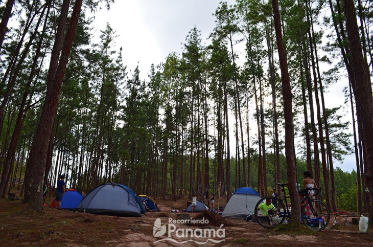 1st Camping area, the Lake area