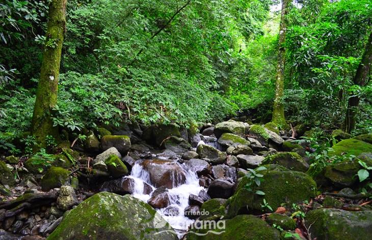 Río en la Piedra Pintada.