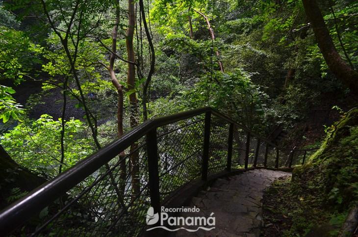 Trails in Altos del Maria