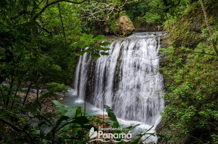 Cascada Nativa